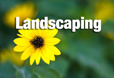 ISO for landscaping companies